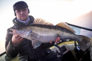big-walleye-reins-bubbling-shaker.jpg